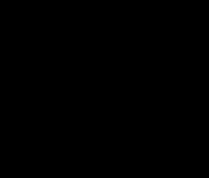 Das Logo für die Meile: Ein handschriftlicher, schwarzer Schriftzug bildet die Wörter